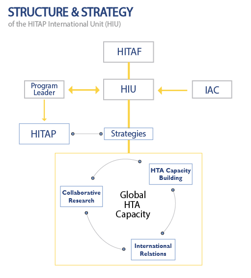HIU Governance Structure-01